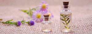 רפואה טבעית - איך לשמור על בריאות הגוף באמצעות רכיבים מן הטבע