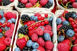קידום עסק למזון אורגני